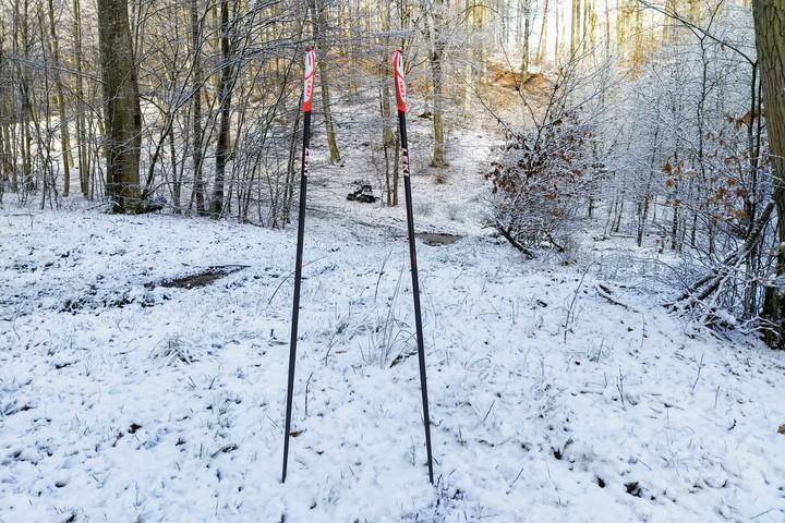 Wbite w ziemię kije do nordic walking firmy Leki