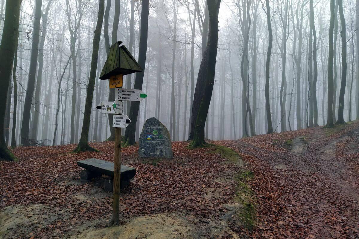 Słup z oznaczeniami szlaków. W tle drzewa we mgle.